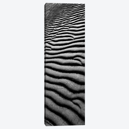 Sandscape II Canvas Print #TQU280} by Tom Quartermaine Canvas Print