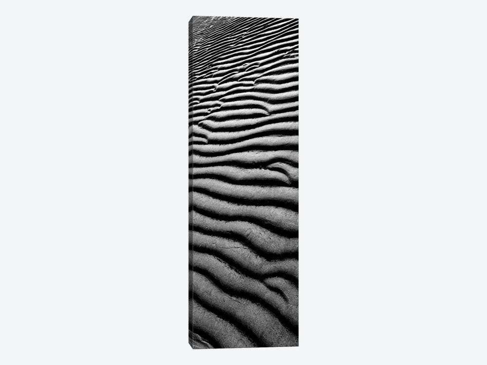 Sandscape II by Tom Quartermaine 1-piece Canvas Print