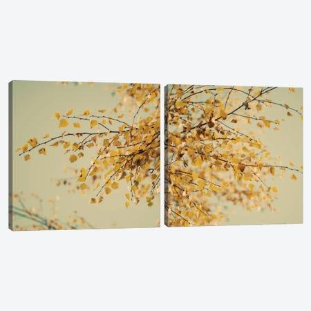 Fall Leaves Diptych Canvas Print Set #TQU2HSET003} by Tom Quartermaine Canvas Artwork