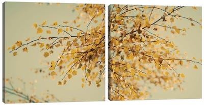 Fall Leaves Diptych Canvas Art Print