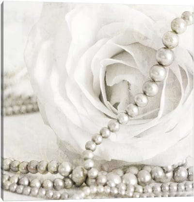 White Rose With Pearls Canvas Art Print