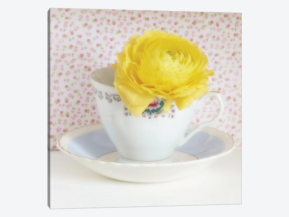Yellow Flower In Cup And Saucer by Tom Quartermaine 1-piece Canvas Artwork