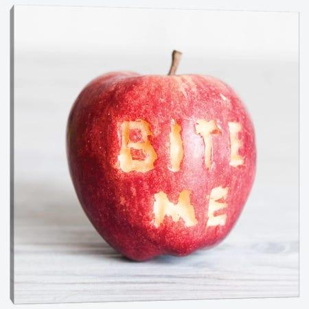 'Bite Me' In An Apple 3-Piece Canvas #TQU56} by Tom Quartermaine Canvas Wall Art
