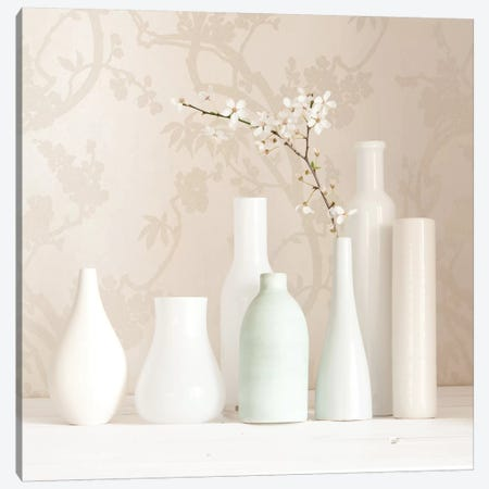 Blossom And White Vases Still Life Canvas Print #TQU57} by Tom Quartermaine Canvas Wall Art