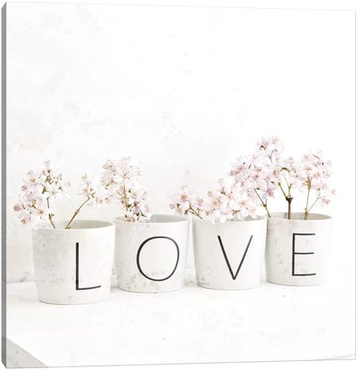Blossom In Cups Saying 'Love' Canvas Art Print