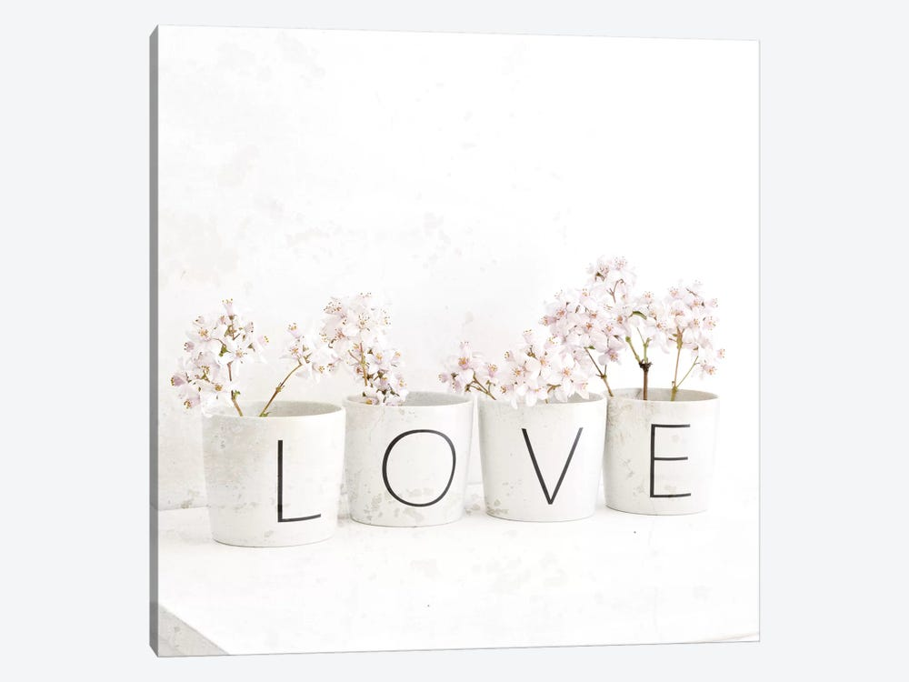 Blossom In Cups Saying 'Love' by Tom Quartermaine 1-piece Canvas Art