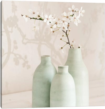 Blossom With 3 Vases Canvas Art Print