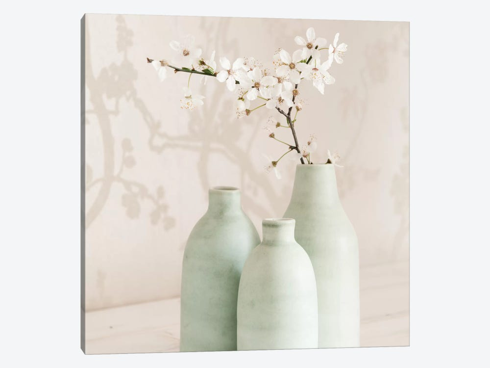 Blossom With 3 Vases by Tom Quartermaine 1-piece Canvas Art Print