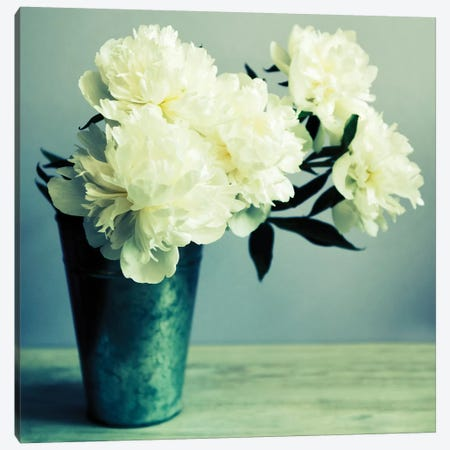 Bunch Of White Peonies In Vase Canvas Print #TQU69} by Tom Quartermaine Canvas Artwork