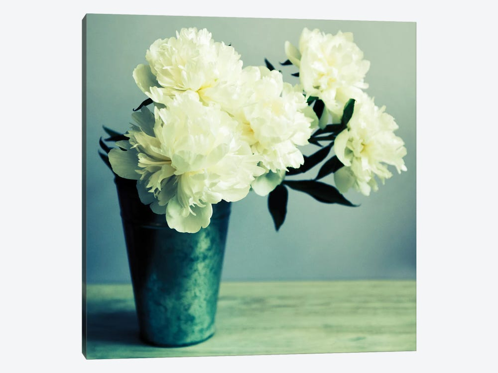 Bunch Of White Peonies In Vase by Tom Quartermaine 1-piece Canvas Wall Art