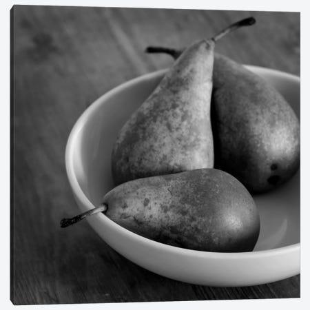 3 Pears In A Bowl B&W Canvas Print #TQU9} by Tom Quartermaine Canvas Wall Art