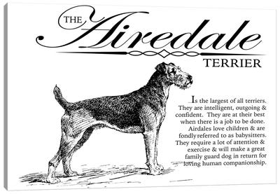 Vintage Airedale Terrier Storybook Style Canvas Art Print