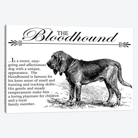 Vintage Bloodhound Storybook Style Canvas Print #TRA120} by Traci Anderson Canvas Art