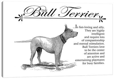 Vintage Bull Terrier Storybook Style Canvas Art Print