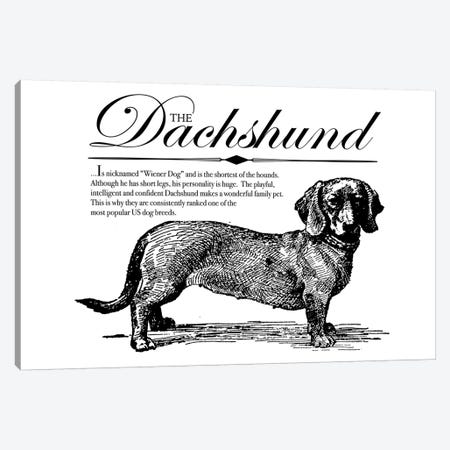 Vintage Dachshund Storybook Style Canvas Print #TRA125} by Traci Anderson Canvas Print