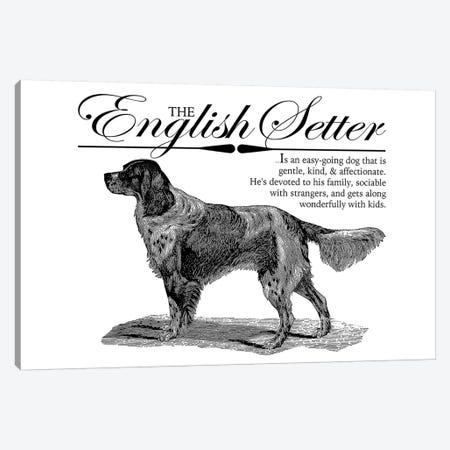 Vintage English Setter Storybook Style Canvas Print #TRA127} by Traci Anderson Canvas Art Print