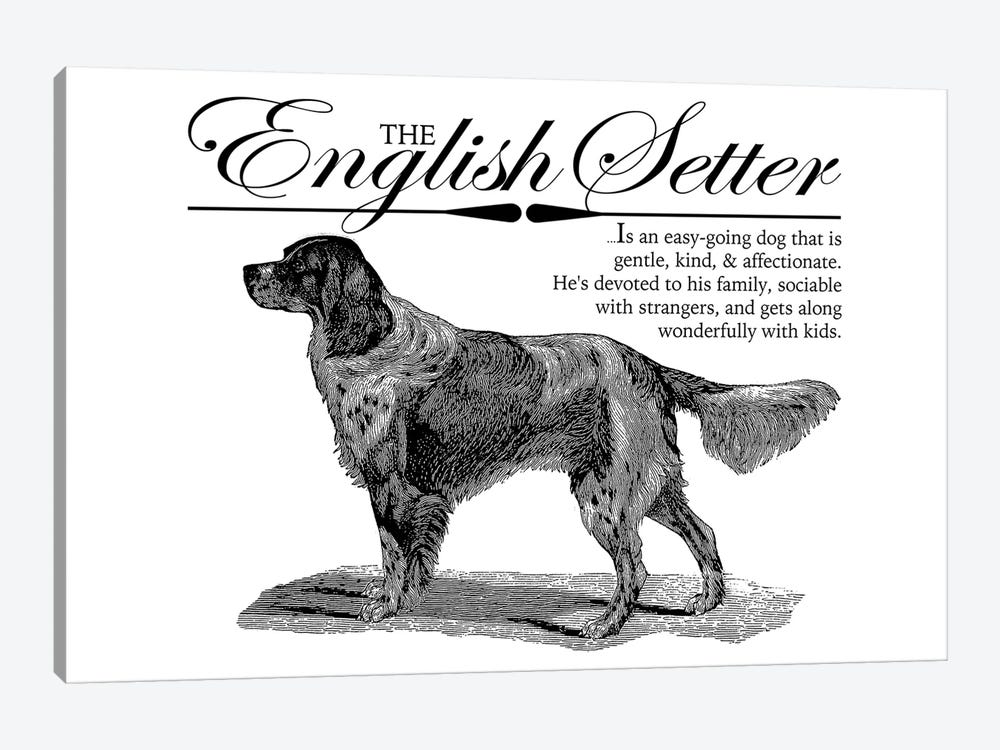 Vintage English Setter Storybook Style by Traci Anderson 1-piece Canvas Wall Art