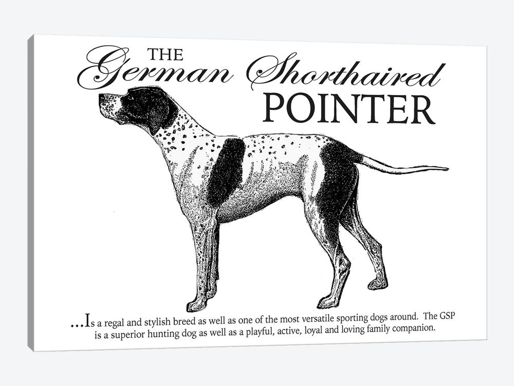 Vintage German Shorthaired Pointer Storybook Style by Traci Anderson 1-piece Art Print