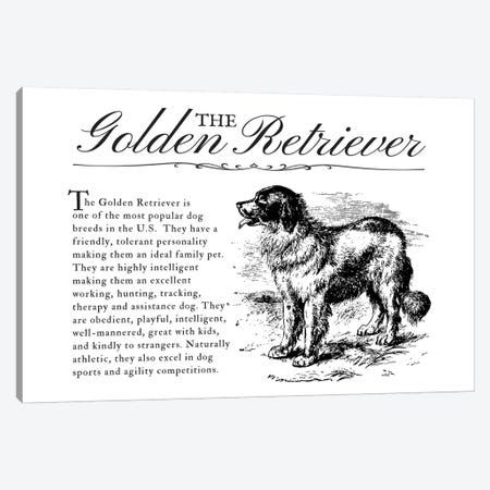 Vintage Golden Retriever Storybook Style Canvas Print #TRA129} by Traci Anderson Canvas Wall Art