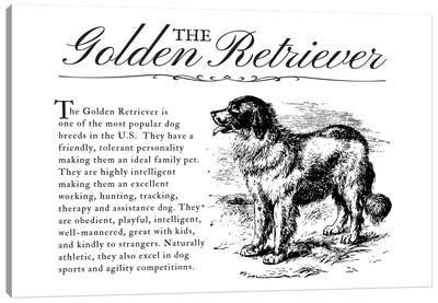 Vintage Golden Retriever Storybook Style Canvas Art Print