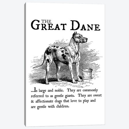 Vintage Great Dane Storybook Style Canvas Print #TRA130} by Traci Anderson Art Print