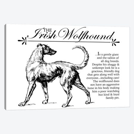 Vintage Irish Wolfhound Storybook Style Canvas Print #TRA131} by Traci Anderson Canvas Art Print