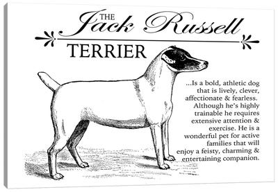 Vintage Jack Russell Storybook Style Canvas Art Print