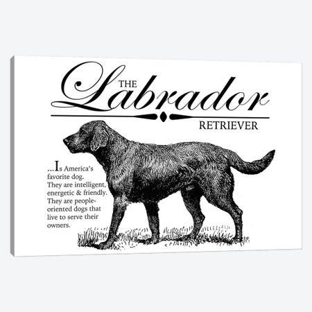 Vintage Labrador Retriever Storybook Style Canvas Print #TRA133} by Traci Anderson Canvas Art Print