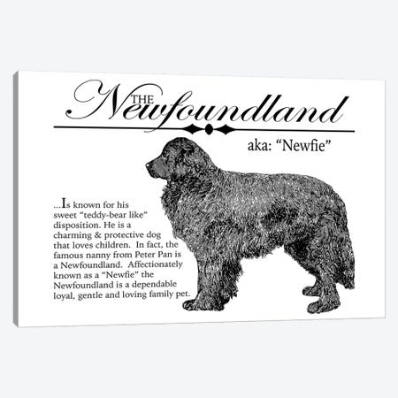Vintage Newfoundland Storybook Style 3-Piece Canvas #TRA134} by Traci Anderson Canvas Wall Art