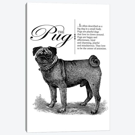 Vintage Pug Storybook Style Canvas Print #TRA137} by Traci Anderson Canvas Art