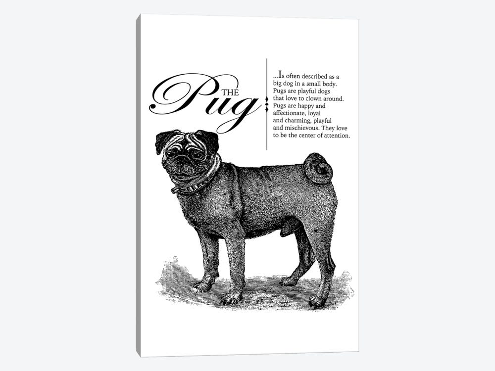 Vintage Pug Storybook Style by Traci Anderson 1-piece Canvas Print