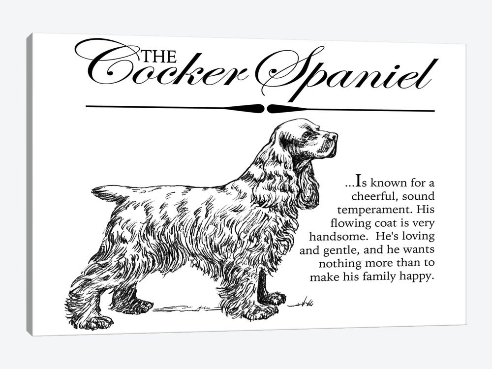 Vintage Storybook Style Cocker Spaniel by Traci Anderson 1-piece Canvas Art Print