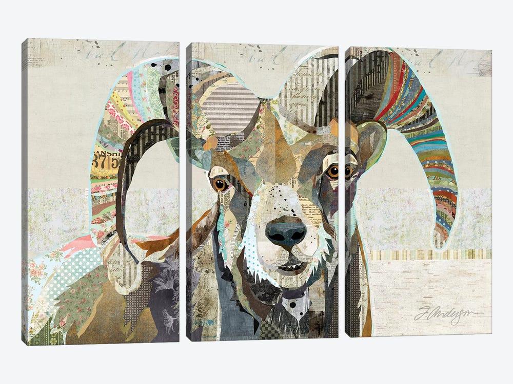 Wild Bighorn Sheep by Traci Anderson 3-piece Art Print