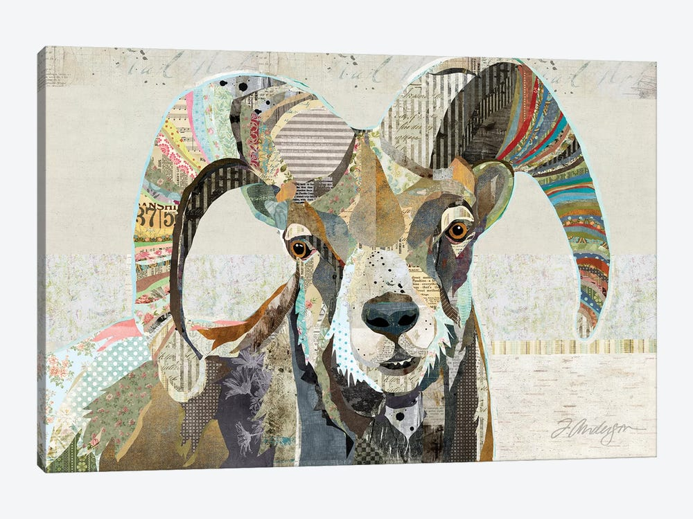 Wild Bighorn Sheep by Traci Anderson 1-piece Art Print