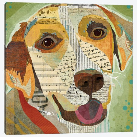 Yellow Lab Canvas Print #TRA150} by Traci Anderson Art Print