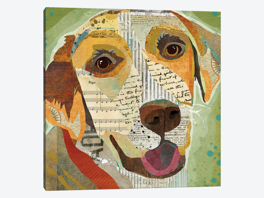 Yellow Lab by Traci Anderson 1-piece Canvas Art