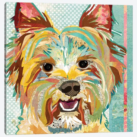 Yorkie Canvas Print #TRA151} by Traci Anderson Canvas Print