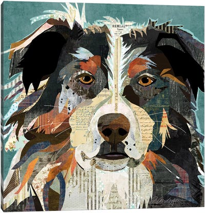 Bright Eyed Aussie Canvas Art Print