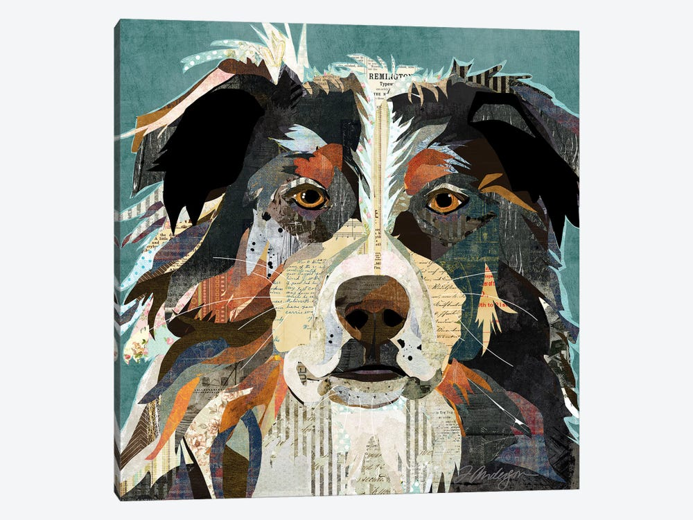 Bright Eyed Aussie by Traci Anderson 1-piece Canvas Art