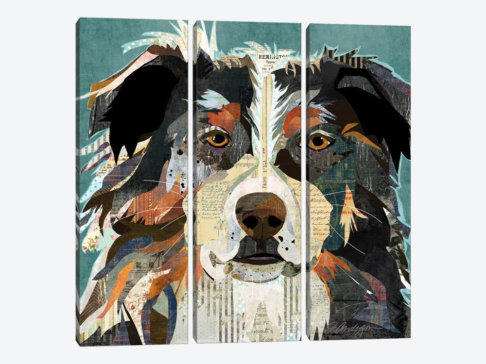 Bright Eyed Aussie by Traci Anderson 3-piece Canvas Wall Art