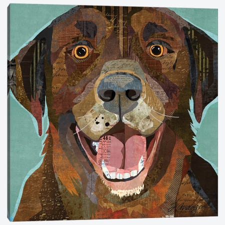 Grinning Chocolate Lab Canvas Print #TRA177} by Traci Anderson Canvas Art
