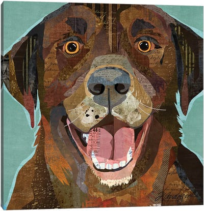 Grinning Chocolate Lab Canvas Art Print