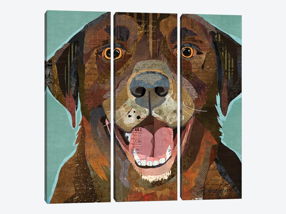 Grinning Chocolate Lab by Traci Anderson 3-piece Canvas Print