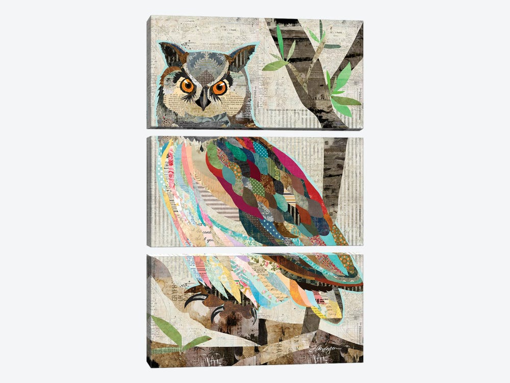 Owl Watch Over You by Traci Anderson 3-piece Canvas Artwork