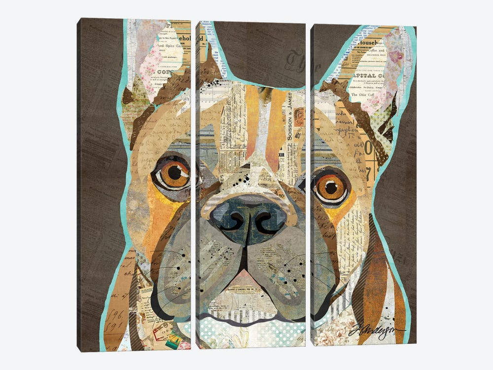 Collage French Bulldog by Traci Anderson 3-piece Canvas Print
