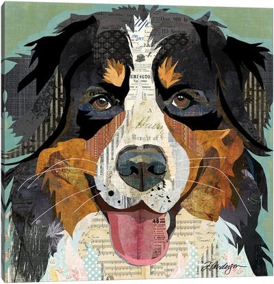 Bernese Mountain Dog Collage Canvas Art Print