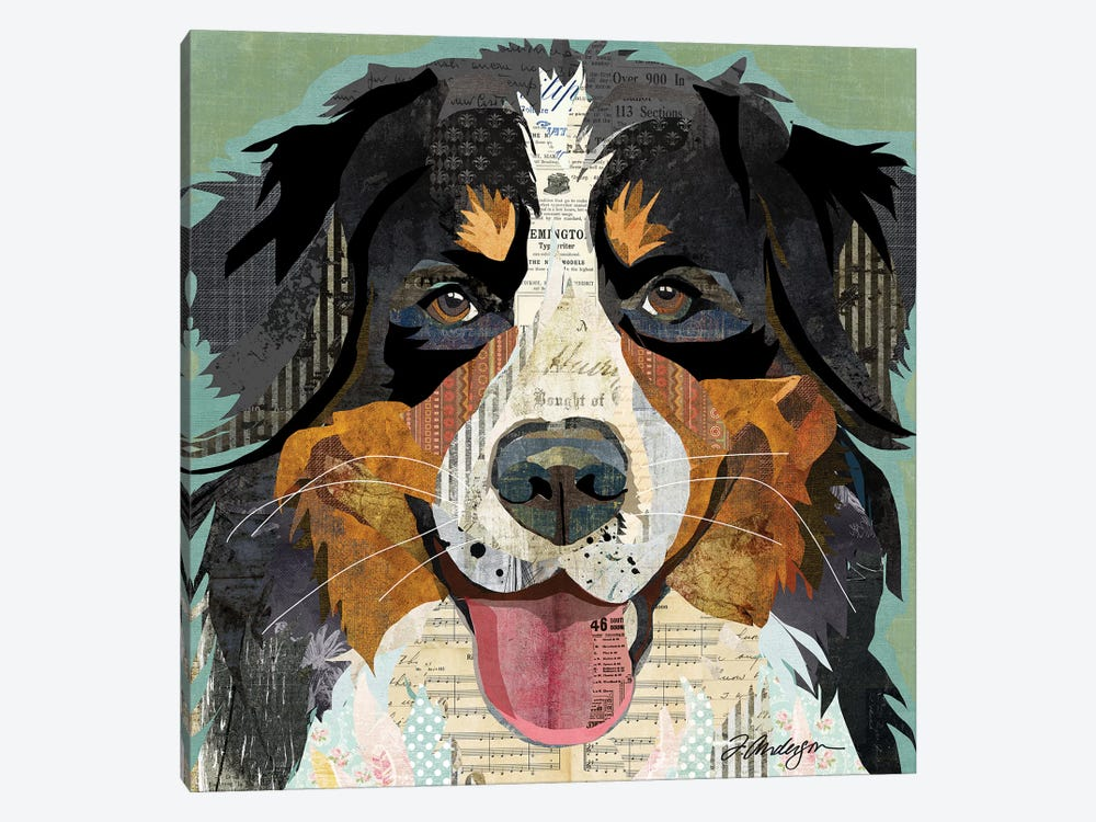 Bernese Mountain Dog Collage by Traci Anderson 1-piece Canvas Wall Art