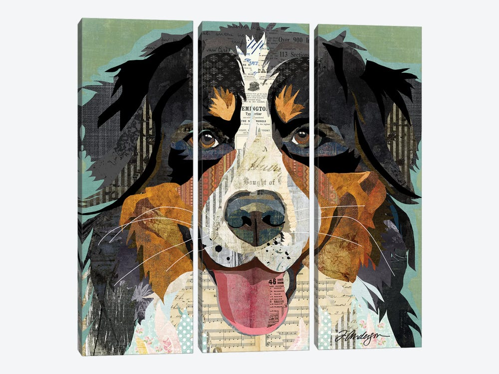 Bernese Mountain Dog Collage by Traci Anderson 3-piece Canvas Wall Art