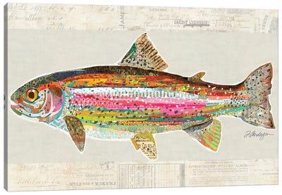 Collage Big Horn River Rainbow Trout Canvas Art Print