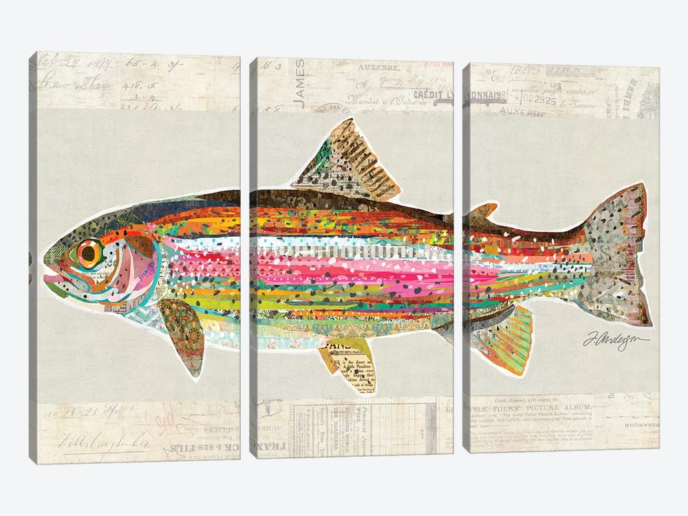 Collage Big Horn River Rainbow Trout by Traci Anderson 3-piece Canvas Art